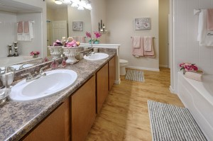 Two Bedroom Apartments for Rent in Northwest Houston, TX - Model Bathroom